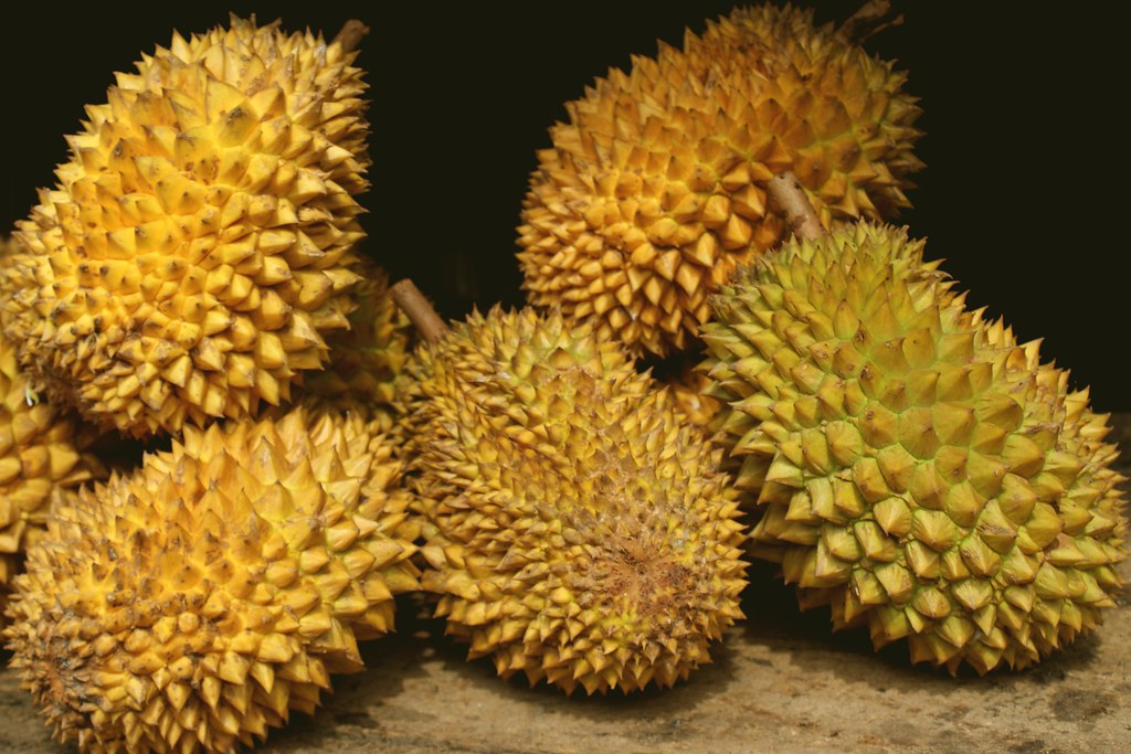 Strong rise in Thailand's durian exports