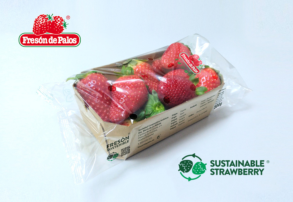 """Fresón de Palos launches """"Sustainable Strawberry"""" brand"""