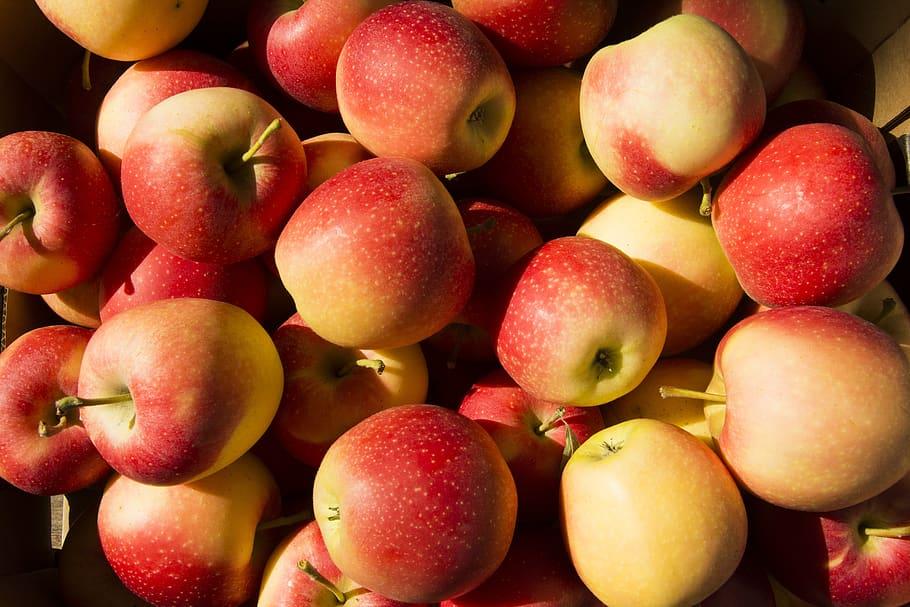 Spanish stone fruit crop to fall 15%