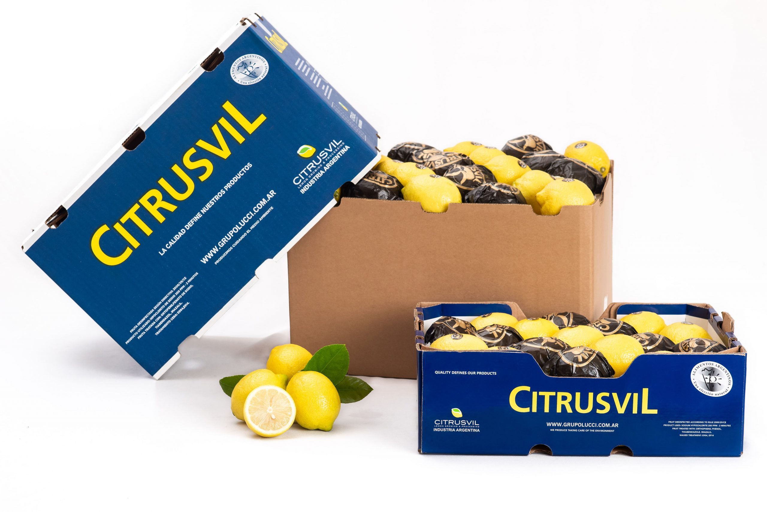 Citrusvil's campaign progresses at a steady pace
