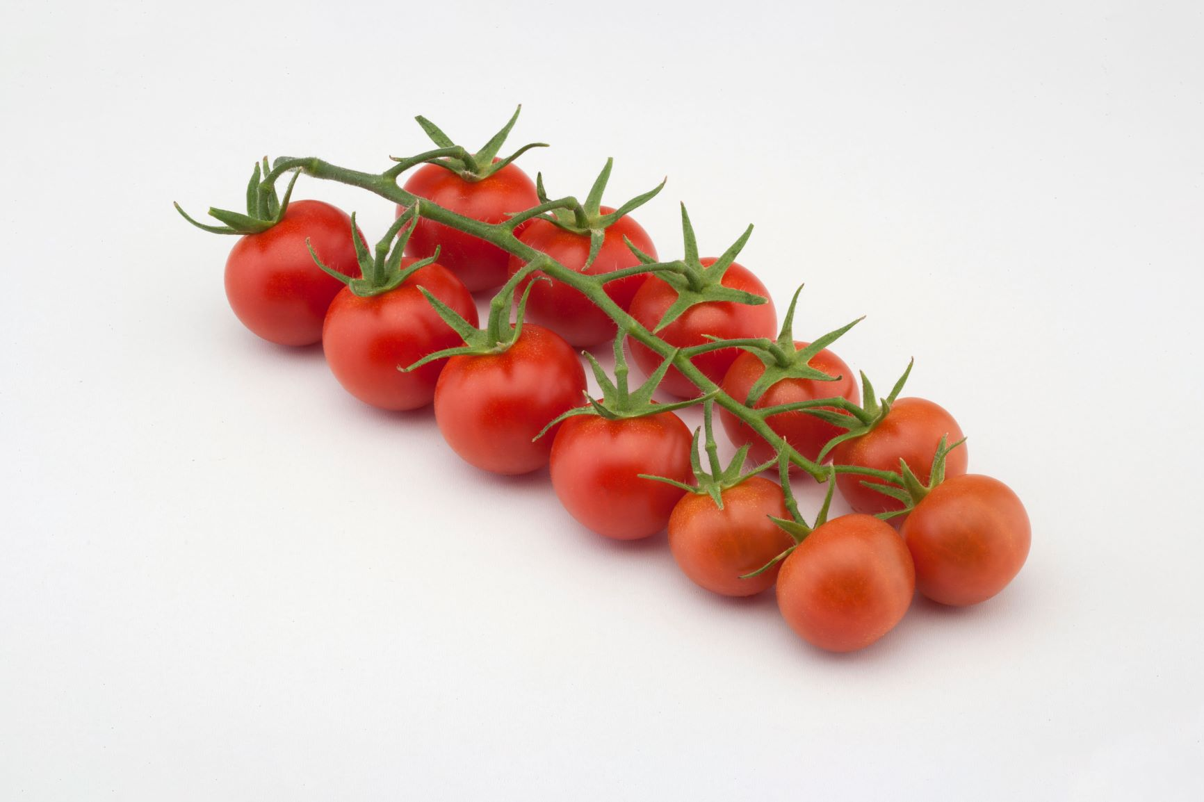 Nebula the tasty tomato booster of innovation in China