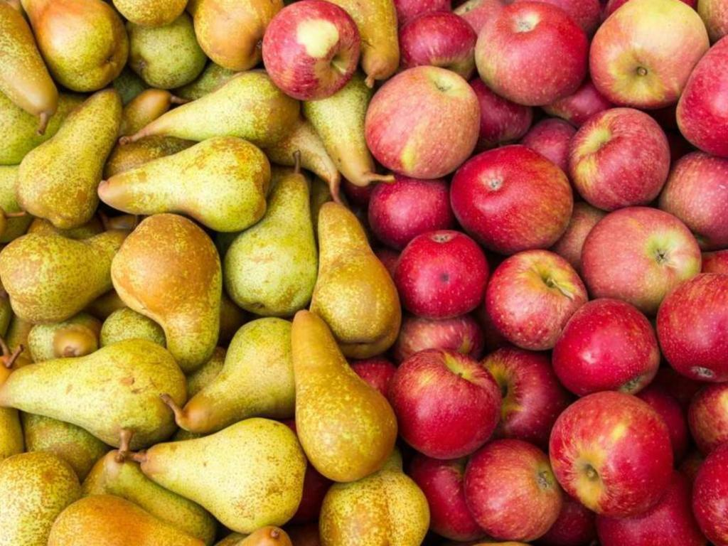 Argentina's organic apple exports fall while pear exports rise
