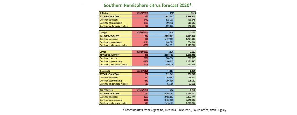 World Citrus Organisation (WCO) presents annual Southern Hemisphere production forecast