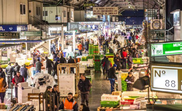 Spanish fresh produce exports fall in May