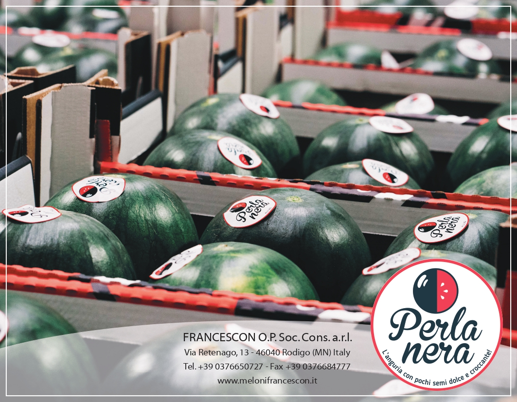 Francescon increases production of smooth melon and black pearl watermelon