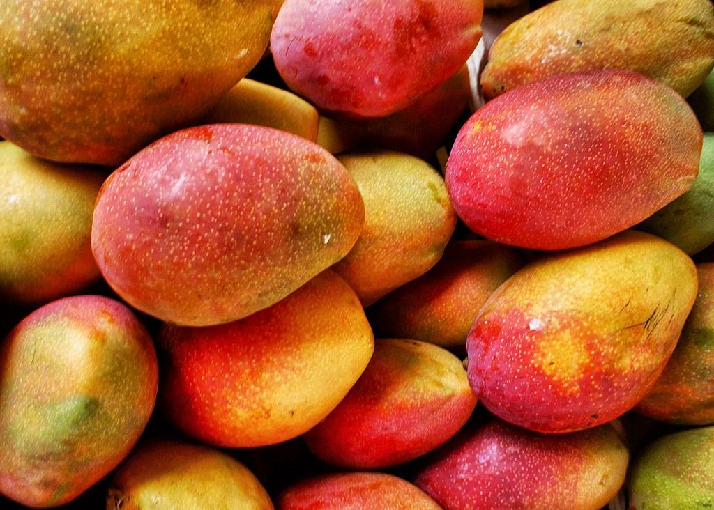 Pakistan's mango exports vastly exceed predictions