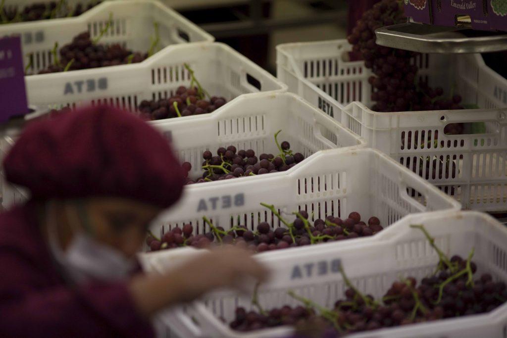 Demand for Peruvian food grows in Vietnam