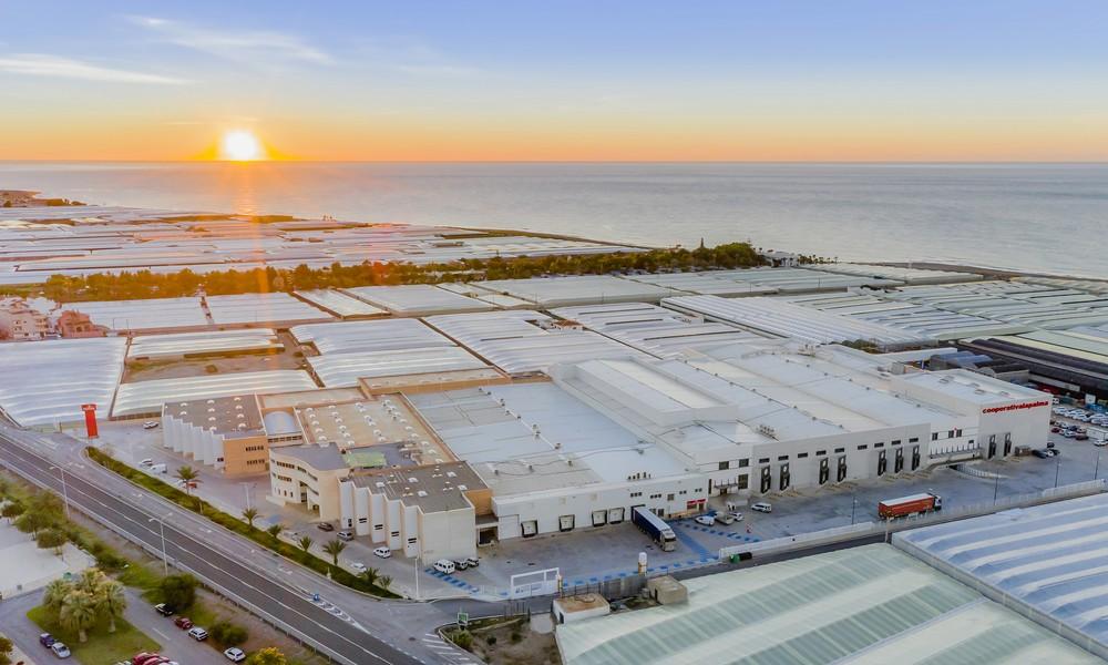 La Palma to launch La Palma eRoom at MACFRUT Digital 2020
