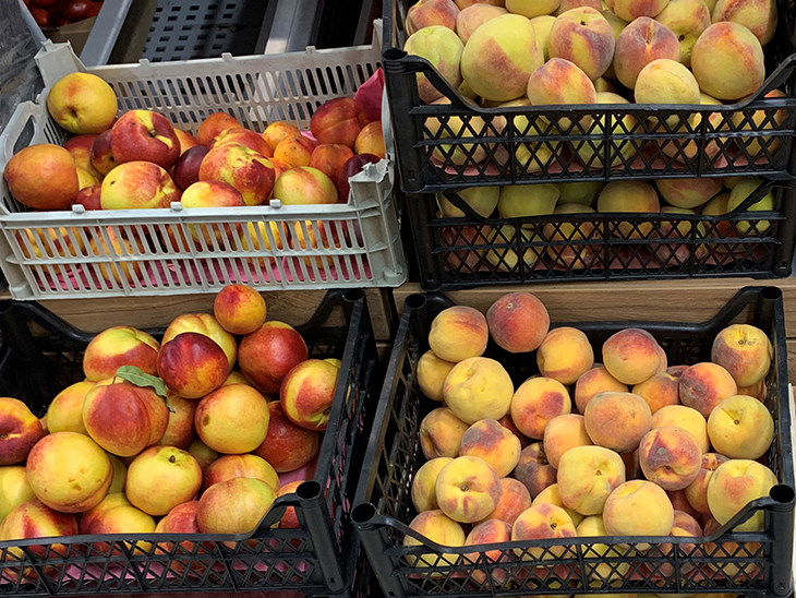 Georgia increased its export of peaches and nectarines by 40%