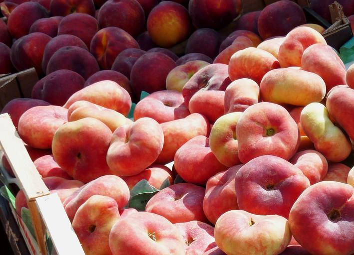Turkey looks to Far East to expand export markets for stone fruit