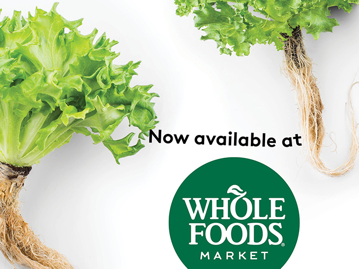 Infarm expands in UK with Whole Foods deal ©Infarm