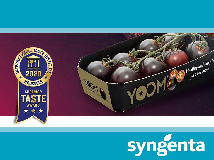 YOOM™ tomato wins prestigious Three Star Superior Taste Award in recognition of its marvelous taste