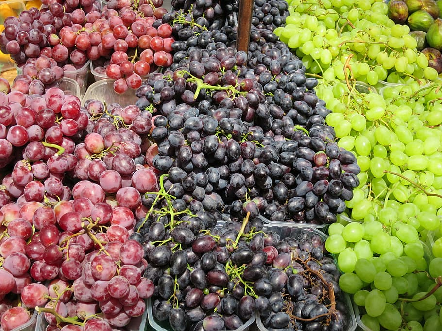 US and Chile vie for share of competitive South Korean grape market