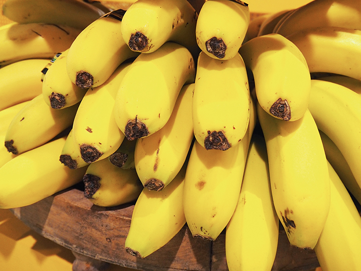 Study finds Ecuador's banana sector to be sustainable