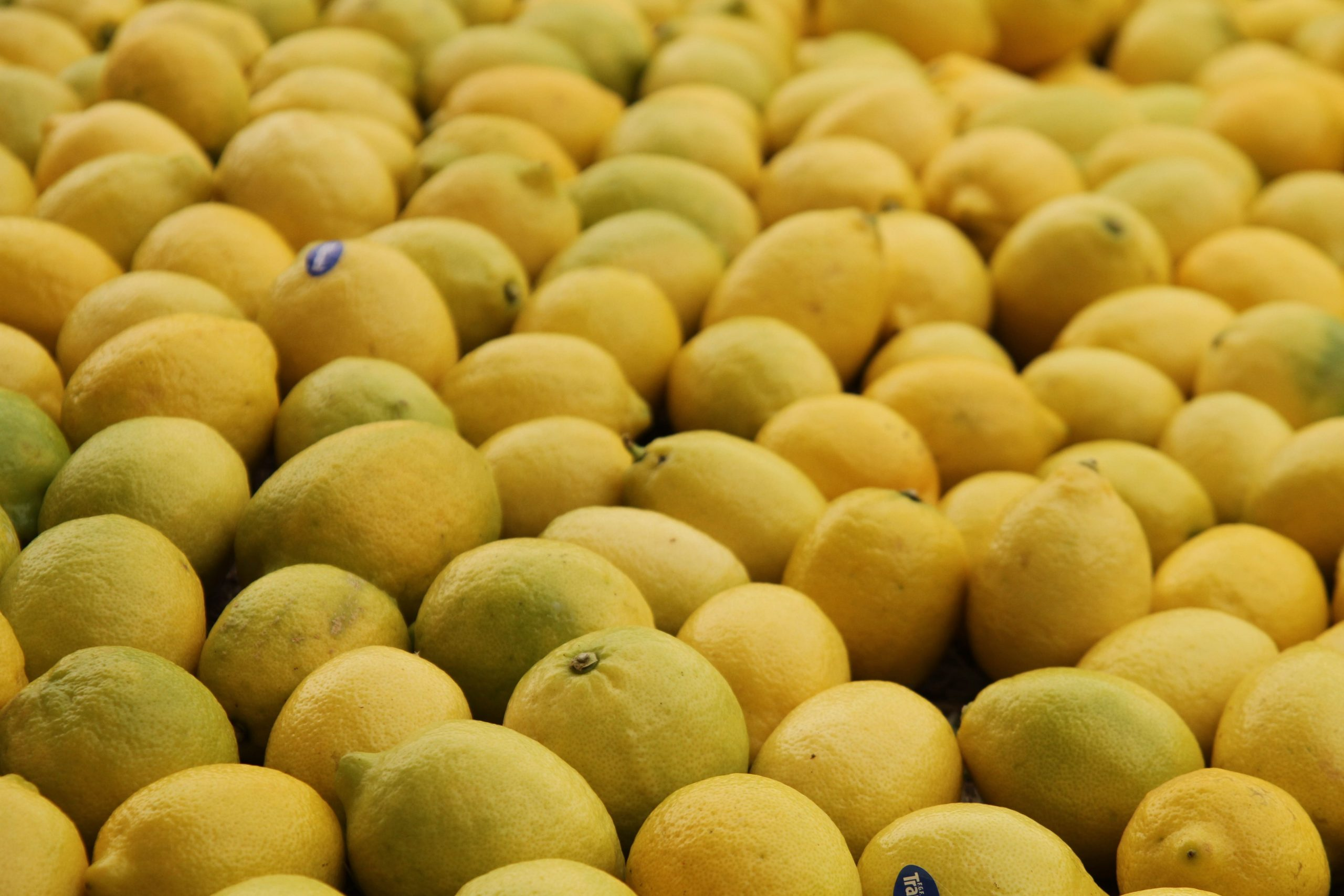 Argentine fresh fruit exports up 6% from 2019