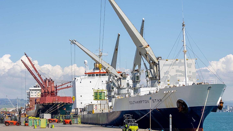 Zespri ships 600,000 tons of New Zealand kiwis to world in 2020