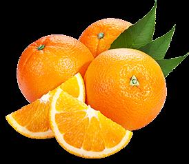 Egypt's orange exports set to recover