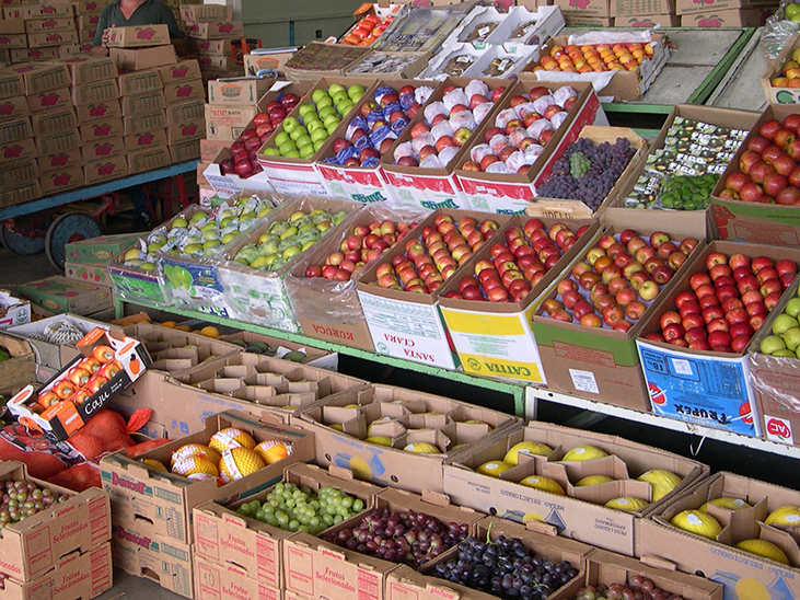 Brazil to step up fruit exports to Middle East © Réussir Fruits et Légumes