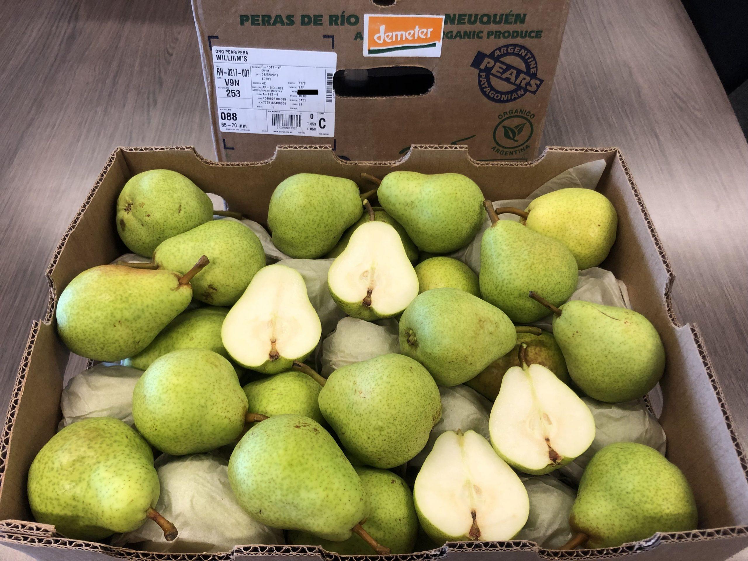 Global Fruit Point: Regular Demeter Pome Fruit Program from Argentina