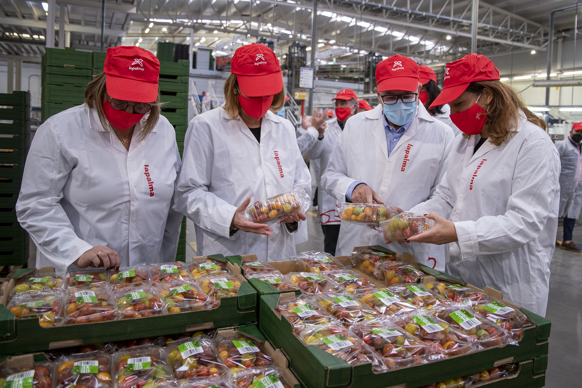 Spain's Minister of Agriculture congratulates Cooperativa La Palma on launch of convenience range: Cherrymole®