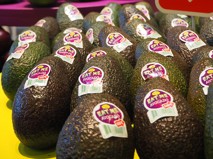 Nature's Pride brings Apeel avocados to Netherlands, Norway and Switzerland © Eurofresh Distribution