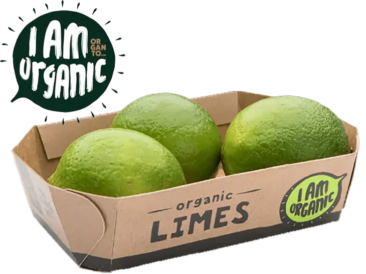 Organto ships its first organic limes from Colombia to Europe © Organto