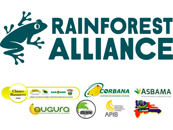 Meeting between Rainforest Alliance, retailers, importers and banana producers