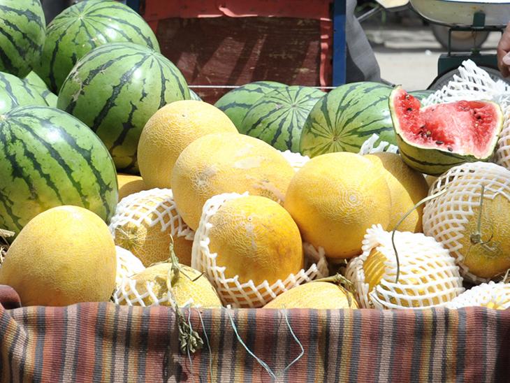 Myanmar sends first watermelon shipment to Middle East © Réussir Fruits et Légumes