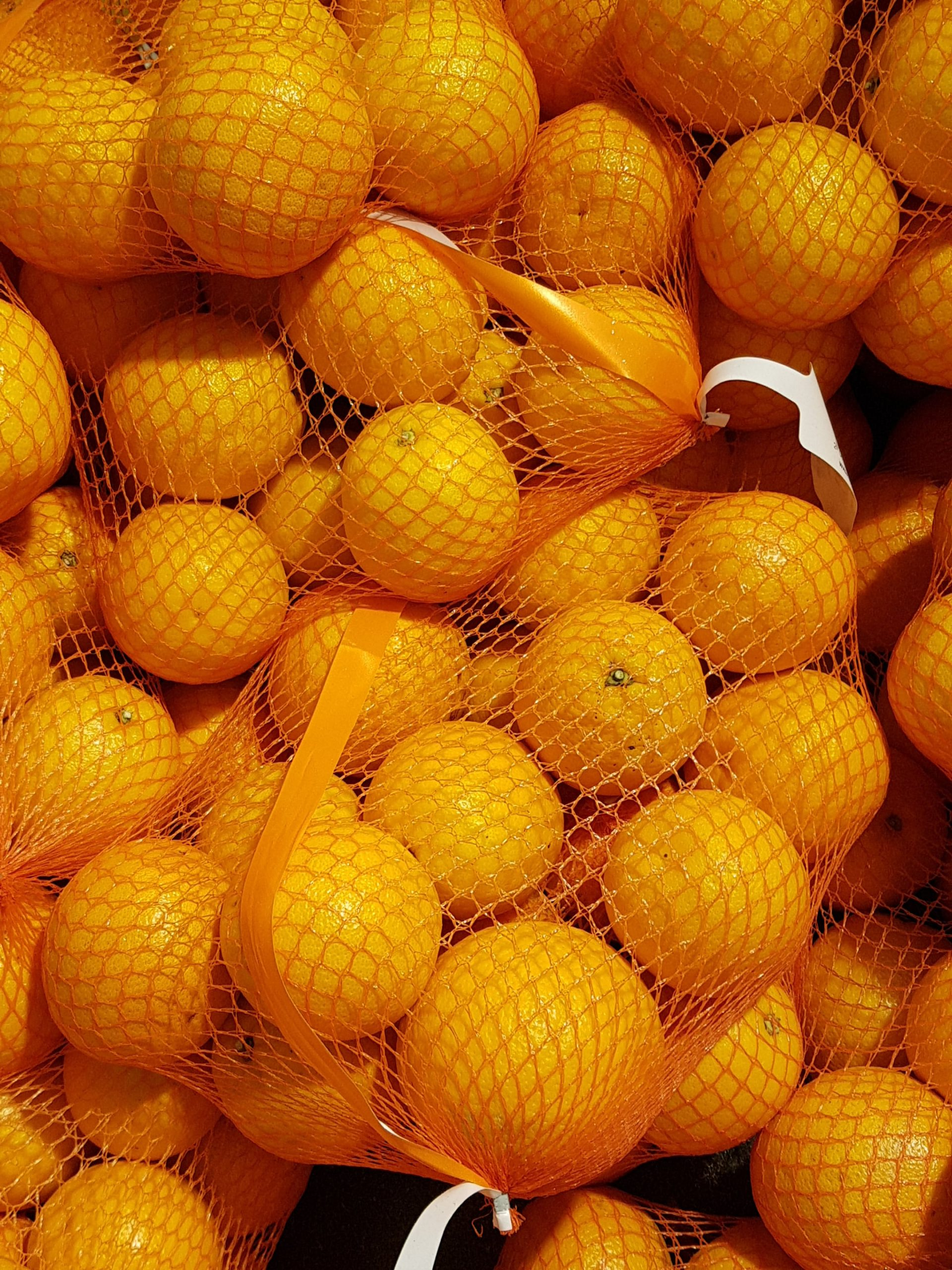 Morocco ramps up citrus production