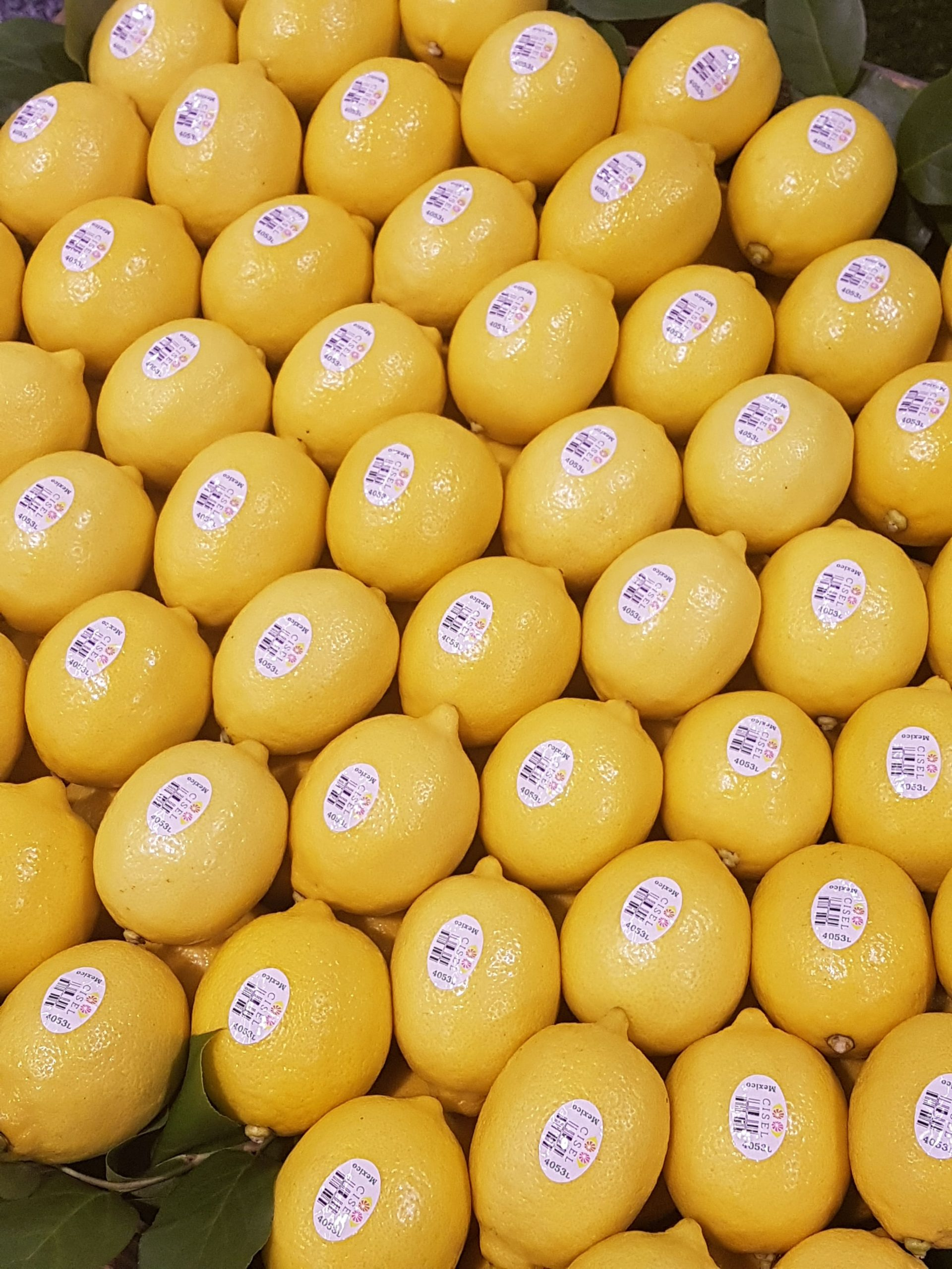 Rebounding Chinese economy to drive growth in citrus demand