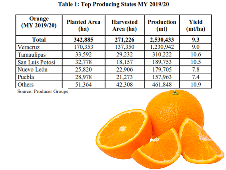 Better campaign expected for Mexican citrus