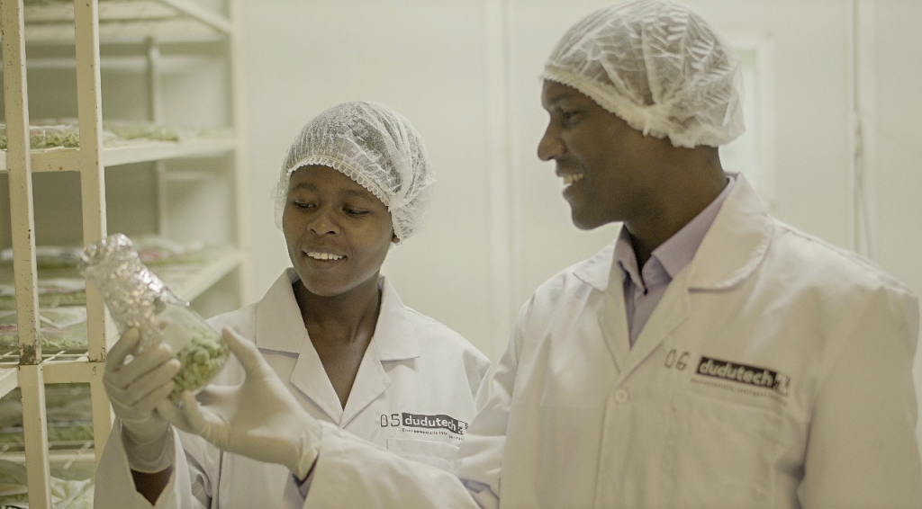 Bioline Agrosciences, an InVivo Group subsidiary (France) acquires* Dudutech (Kenya) and reaffirms its global ambitions in biocontrol