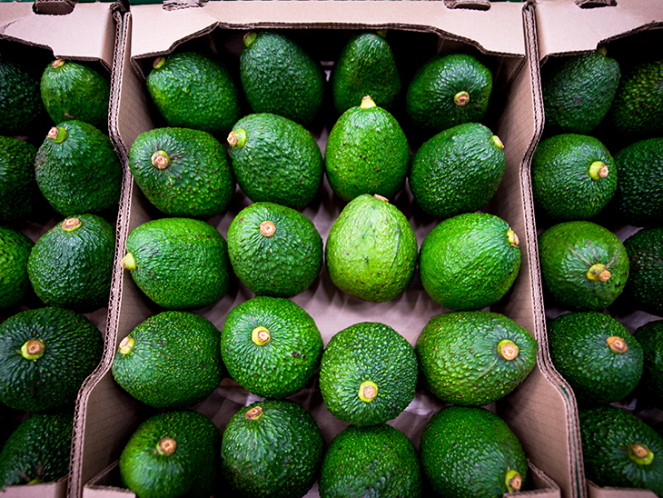 Colombia positions itself as Europe's leading avocado supplier © PROCOLOMBIA