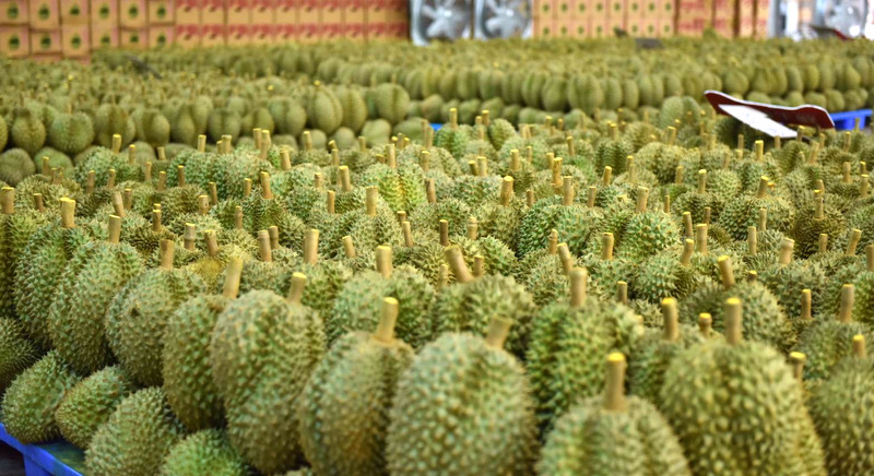 Thailand improves traceability of fruit exports to China