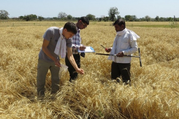 European Commission presents results of study on organic agriculture in developing countries © European Commission