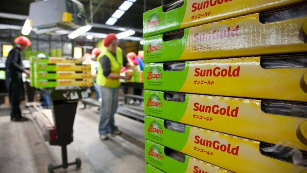 Zespri accused of intimidating behaviour toward Kiwifruit NZ to secure China deal