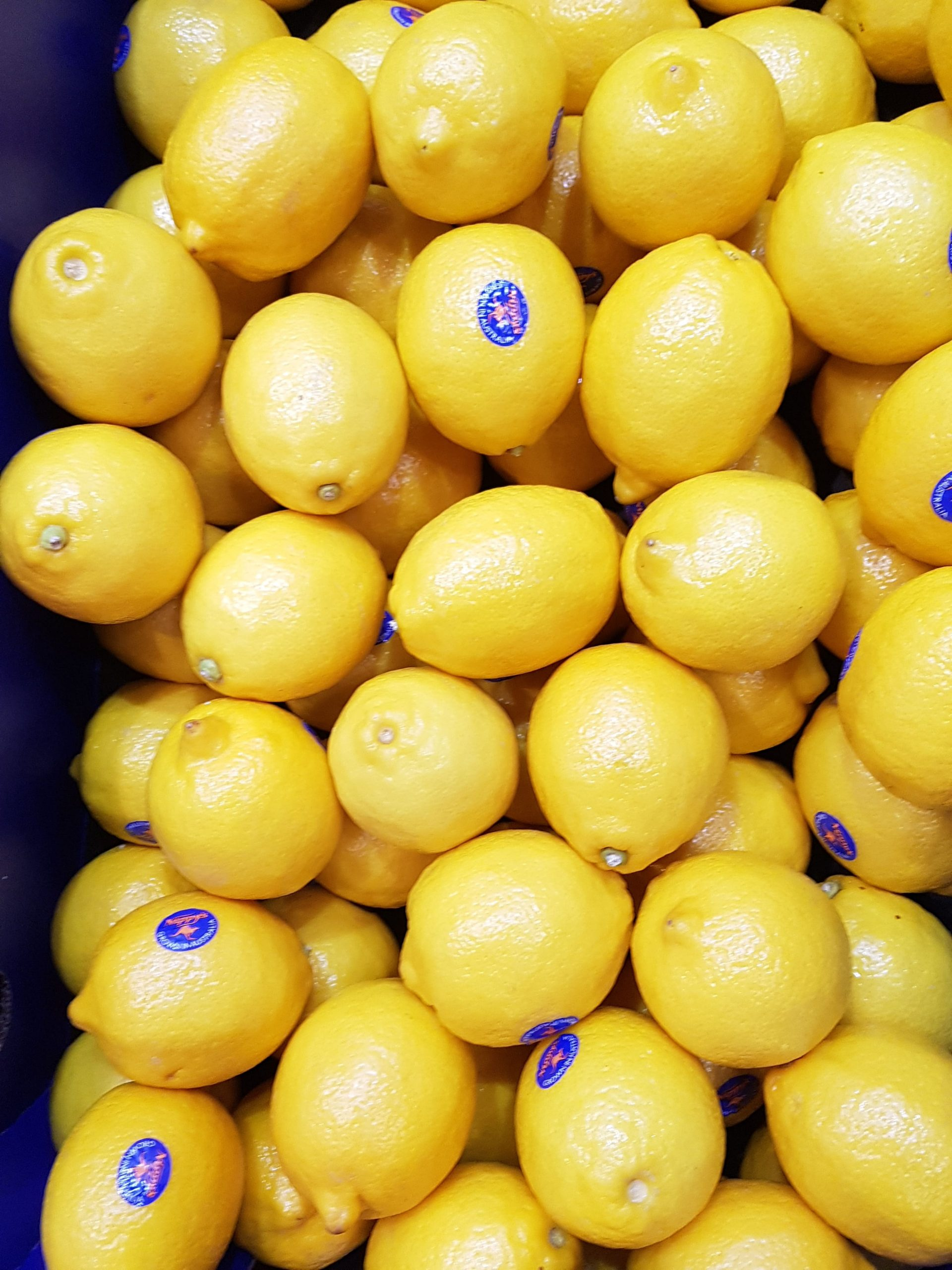 Southern African citrus to reach new heights as 2021 export estimate is released