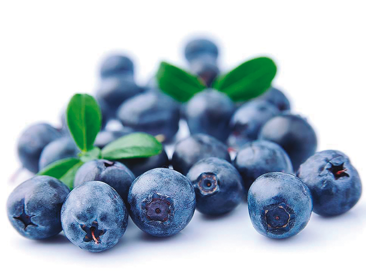 Impressive growth of Peru's organic blueberries © PROARANDANOS