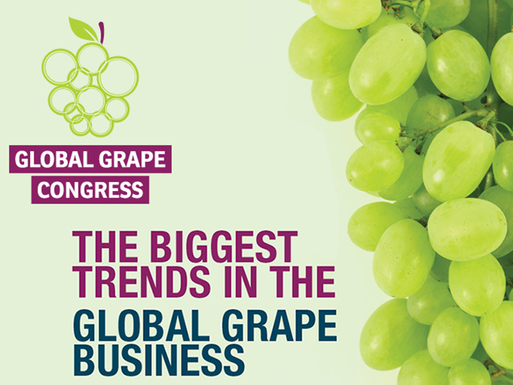 New meeting point for global grape sector