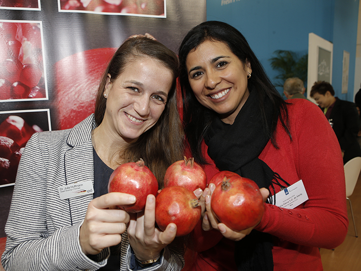 Matchmaking service for fresh fruit and vegetables © IPD