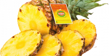Del Monte expands organic fresh cuts in North America