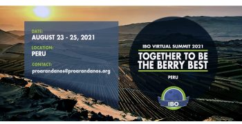 International Berry Summit unveils packed programme of events