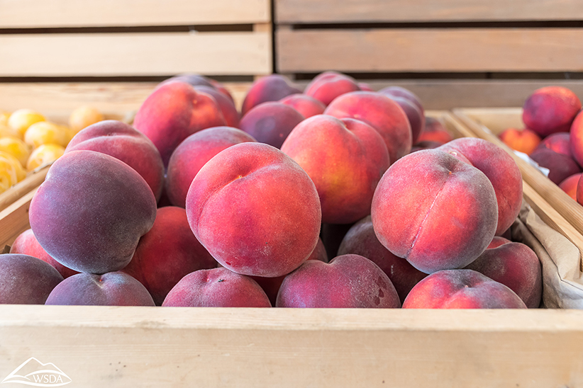 Smaller Spanish stone fruit crop forecast