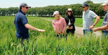 New farm visas for South-East Asians in Australia