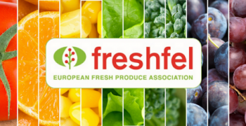 Freshfel Europe calls for efficient and coherent EU agricultural promotion policy