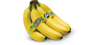 New Zealand's first zero carbon Fairtrade banana