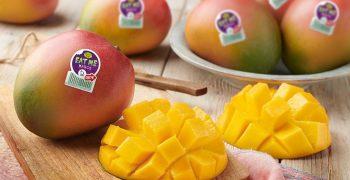 Nature's Pride's Apeel mangoes last twice as long