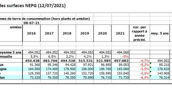 The 2021 harvest will depend more on production per ha than lower planted area.
