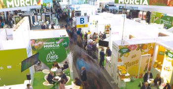 FRUIT LOGISTICA 2022: a face-to-face return to business
