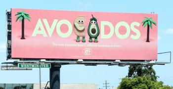 California Avocado summer marketing support